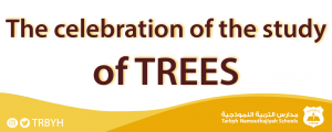 The celebration of the study of trees